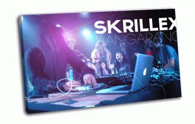 Картина skrillex-dub step