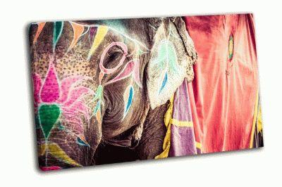 Картина слон из индии