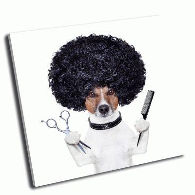 Картина собака парикмахер