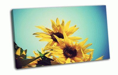 Картина солнечные подсолнухи