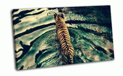 Картина спина тигра