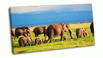 Картина стадо слонов в африканской саванне