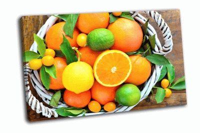 Картина свежие апельсины, лимон, мандарины