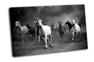 Картина табун лошадей на проселочной дороге
