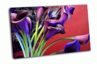 Картина темно-фиолетовые экзотические цветы