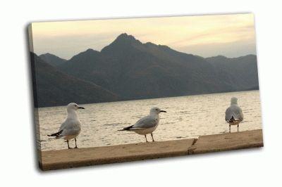 Картина три чайки на озере вакатипу