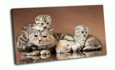 Картина три красивых котенка с матерью