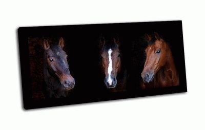 Картина три лошади