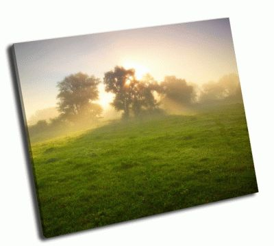Картина туманный луг на рассвете