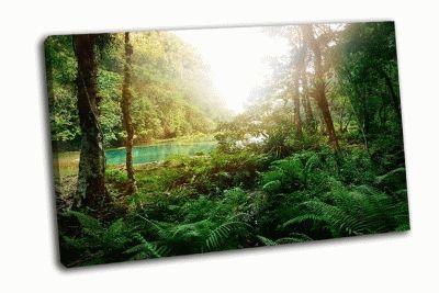 Картина в национальном парке семук чампей