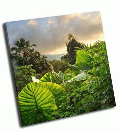 Картина величественный зеленый пейзаж