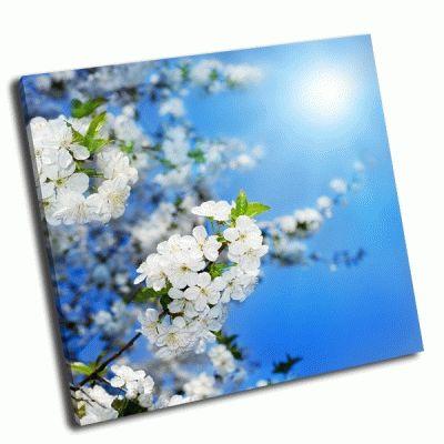 Картина весенний расцвет