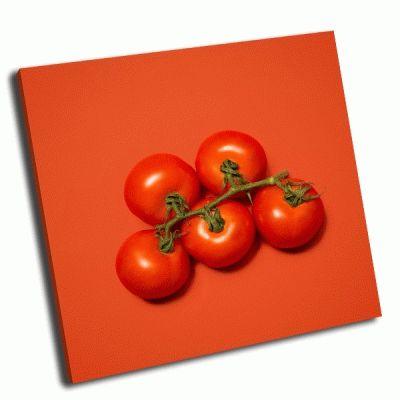 Картина ветка помидор