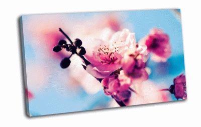 Картина ветка сакуры
