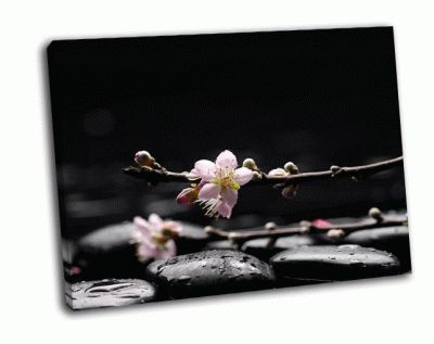 Картина ветка сакуры с черными камнями