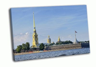 Картина вид на петропавловскую крепость