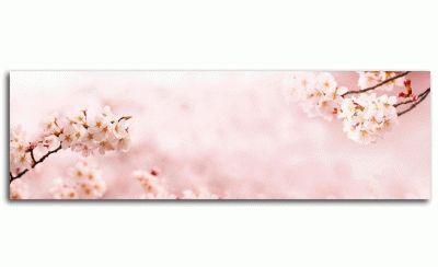 Картина вишни в полном цвету