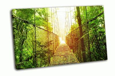 Картина висячие мосты