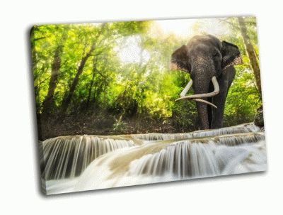 Картина водопад эраван и слон