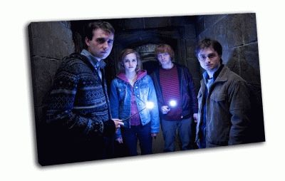 Картина волшебники  и гарри  поттер