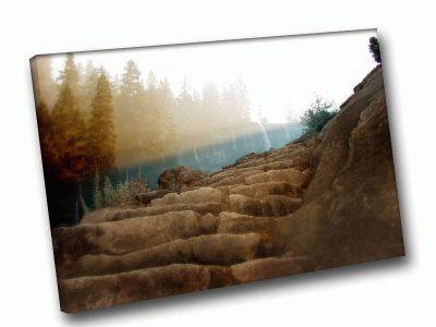 Картина волшебное свечение в лесу