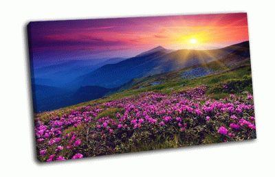 Картина волшебный розовый цветок рододендрон
