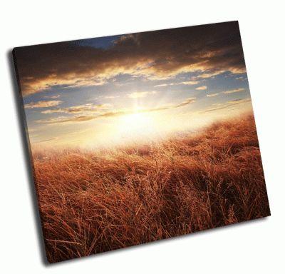 Картина восход осенью