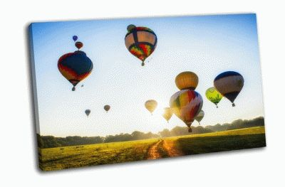 Картина воздушные шары над полем