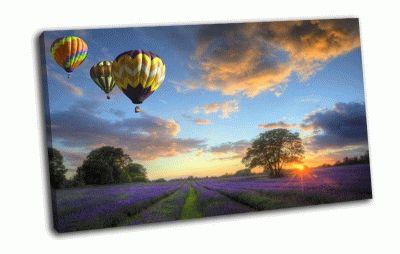 Картина воздушные шары улетают на закате