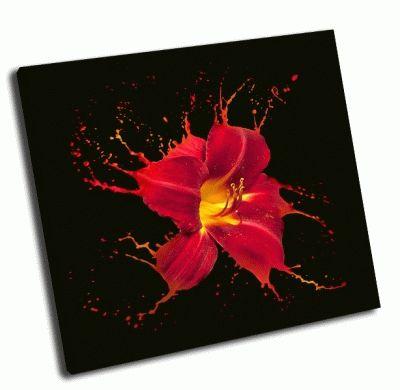 Картина яркий цветок с красными вкраплениями