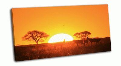 Картина закат в африке