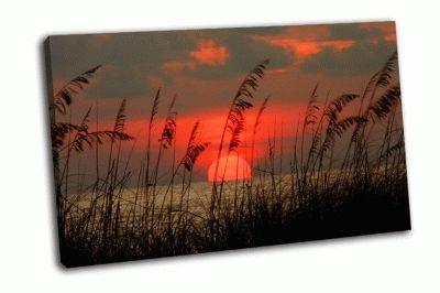 Картина закат во флориде
