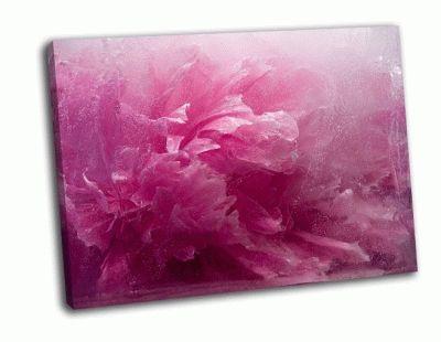 Картина замороженный розовый пион