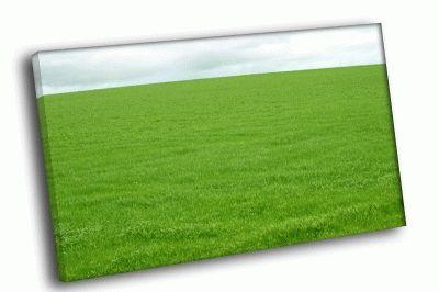 Картина зеленая поляна