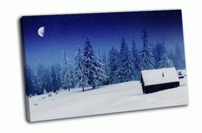 Картина зима в горах, карпаты