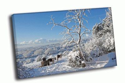 Картина зимний вид на деревушку