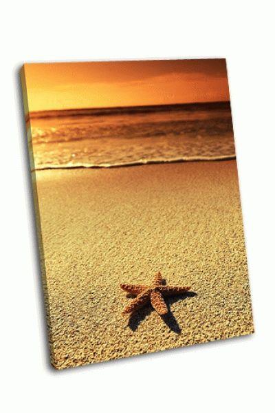 Картина звезда на закате моря