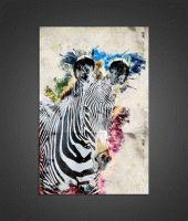 Эмо зебра