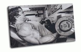 Arnold Schwarzenegger в качалке