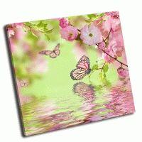 Бабочка на цветке сакура
