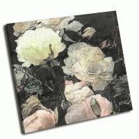 Белые и светло-розовые розы