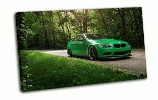 BMW в летнем лесу