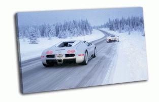 Bugatti  Veyron на снежной дороге