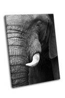 Часть слона