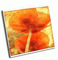 Цветочный гранж фон с двумя маками
