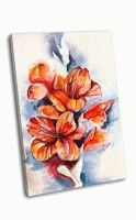 Цветущие гладиолусы и маковые бутоны