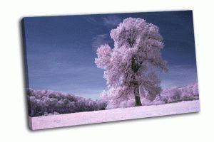 Дерево на белом поле