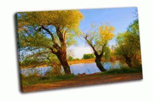 Деревья на берегу реки