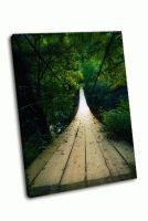 Деревянный мост освещенный светом