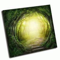 Дорога в волшебный темный лес
